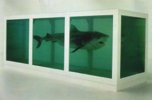 Damien Hirst (fish)