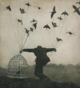 Flying Lessons, Robert & Shana ParkeHarrison