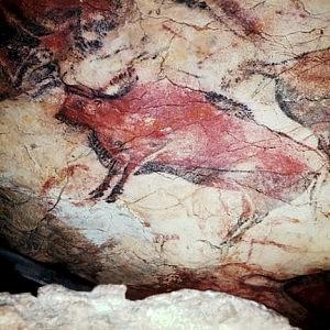 Graffiti di Altamira (bisonti)
